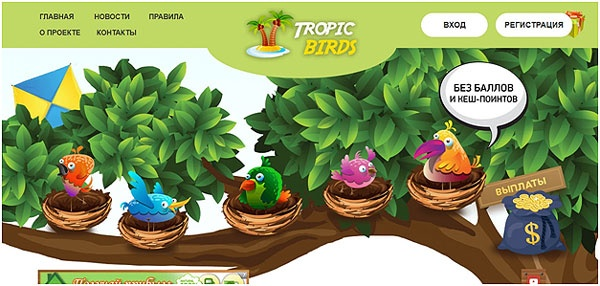 sajt-tropic-birds