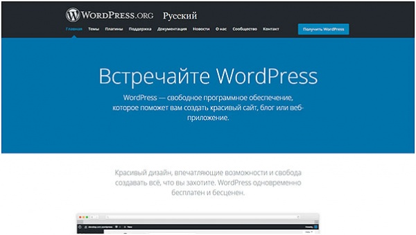 programma-WordPress